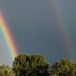 Dubbele regenboog amsterdam